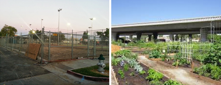 See how local programs have transformed communities within Fresno, CA.