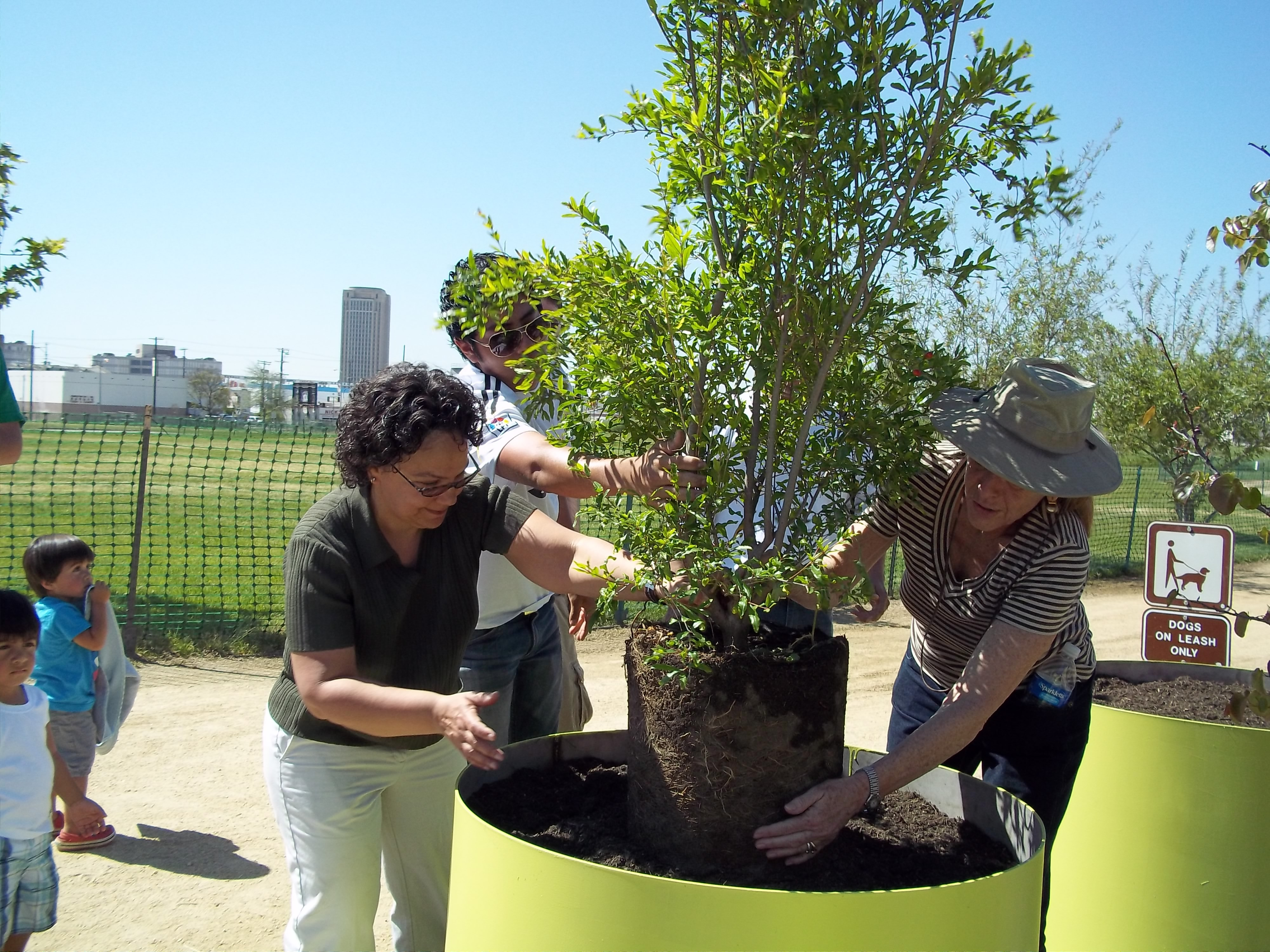 Nancy Sutley Plants Tree in LA