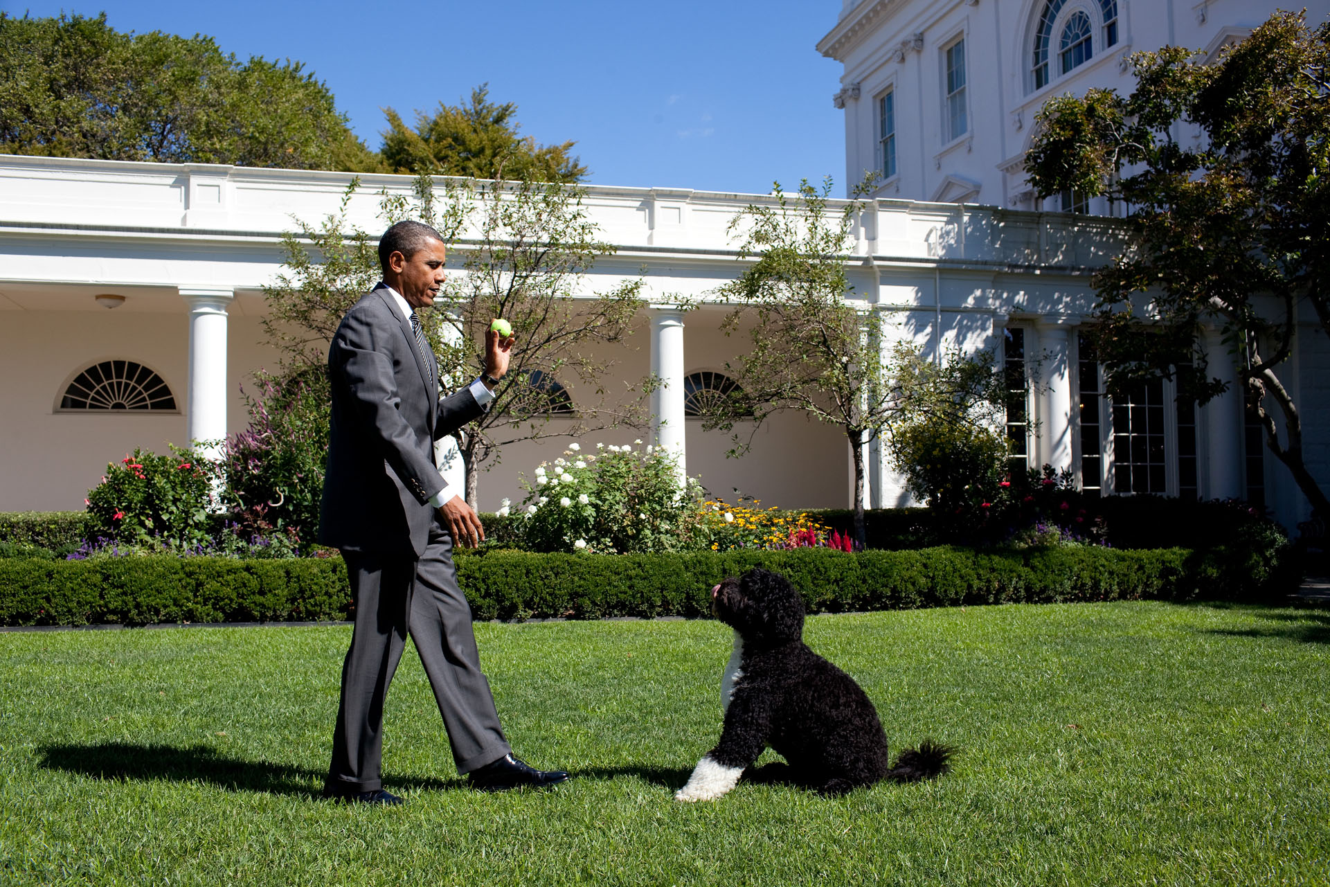 The President Throws Bo the Ball