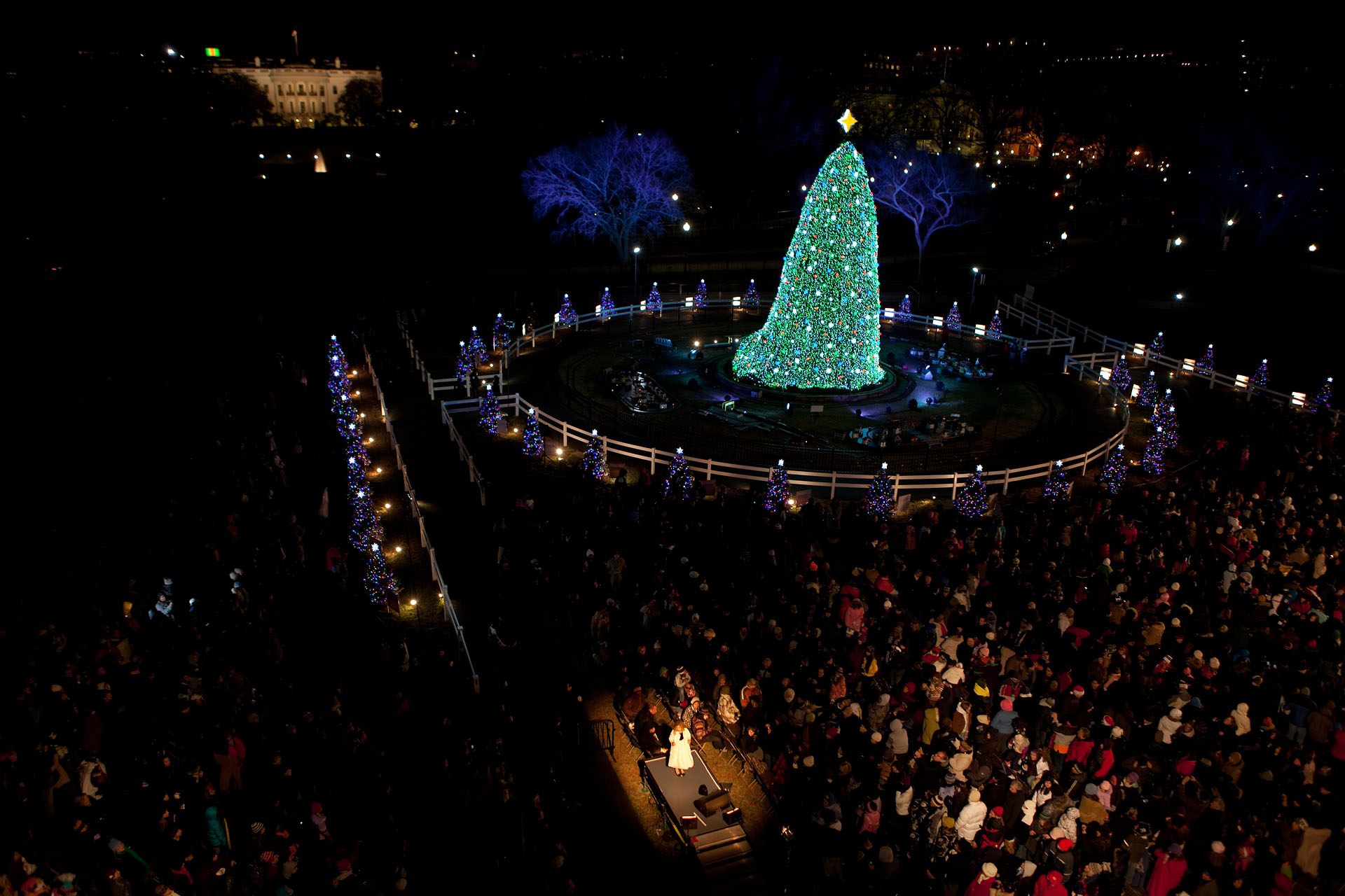 National Christmas Tree Lighting.Attend The National Christmas Tree Lighting Ceremony