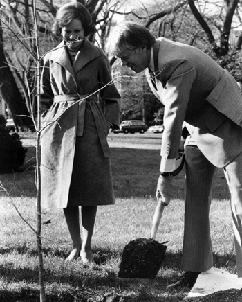 Jimmy Carter plants a tree on the North Lawn of the White House