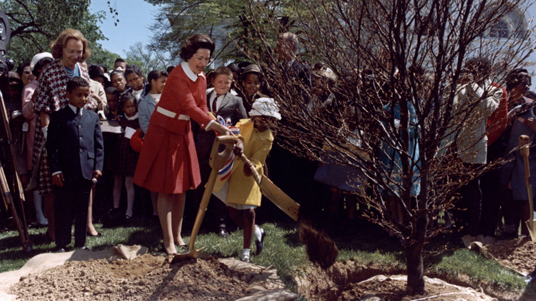 Lady Bird Johnson plants a tree on the North Grounds