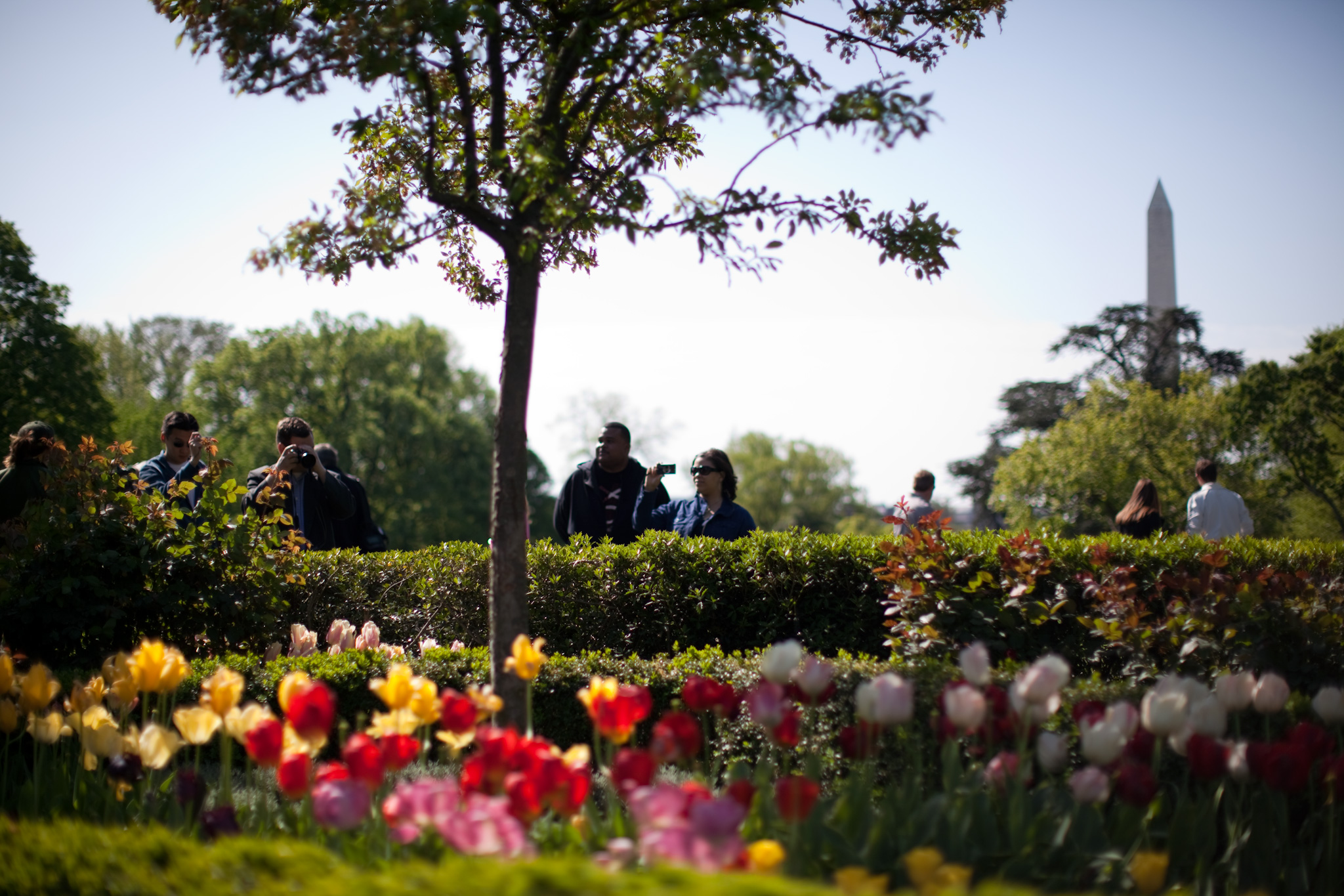 White House Announces First Google+ Photowalk: Spring Garden Tour ...