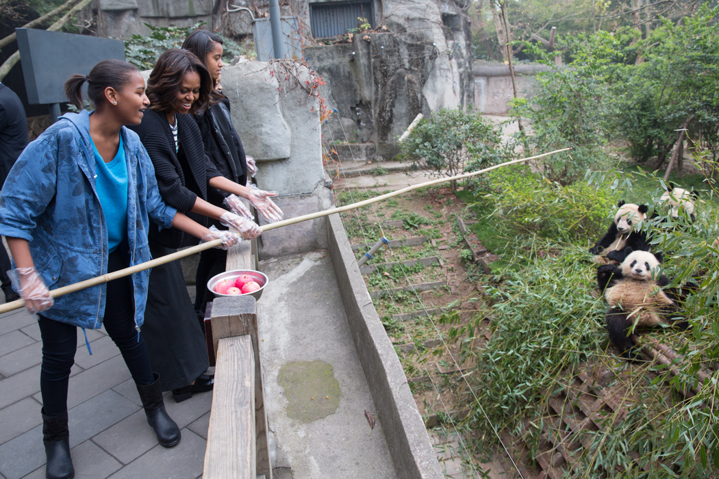 First Lady Michelle Obama, Sasha, Malia and Mrs. Robinson feed apples to Giant Pandas during their visit to Chengdu Panda Base