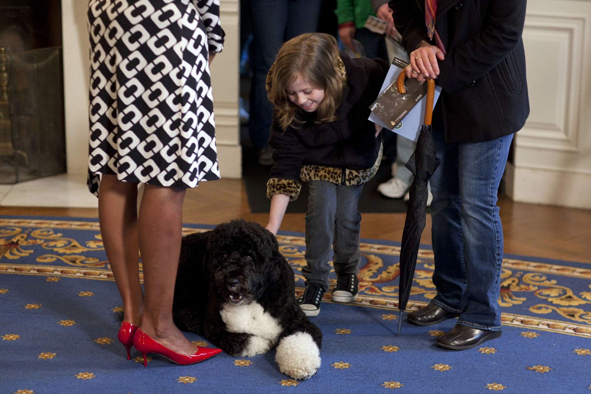 A White House Visitor Pets Bo
