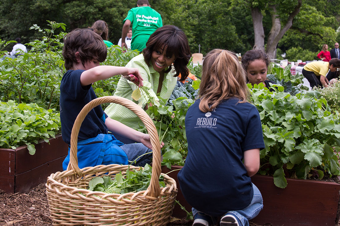 First Lady Michelle Obama harvests vegetables with students