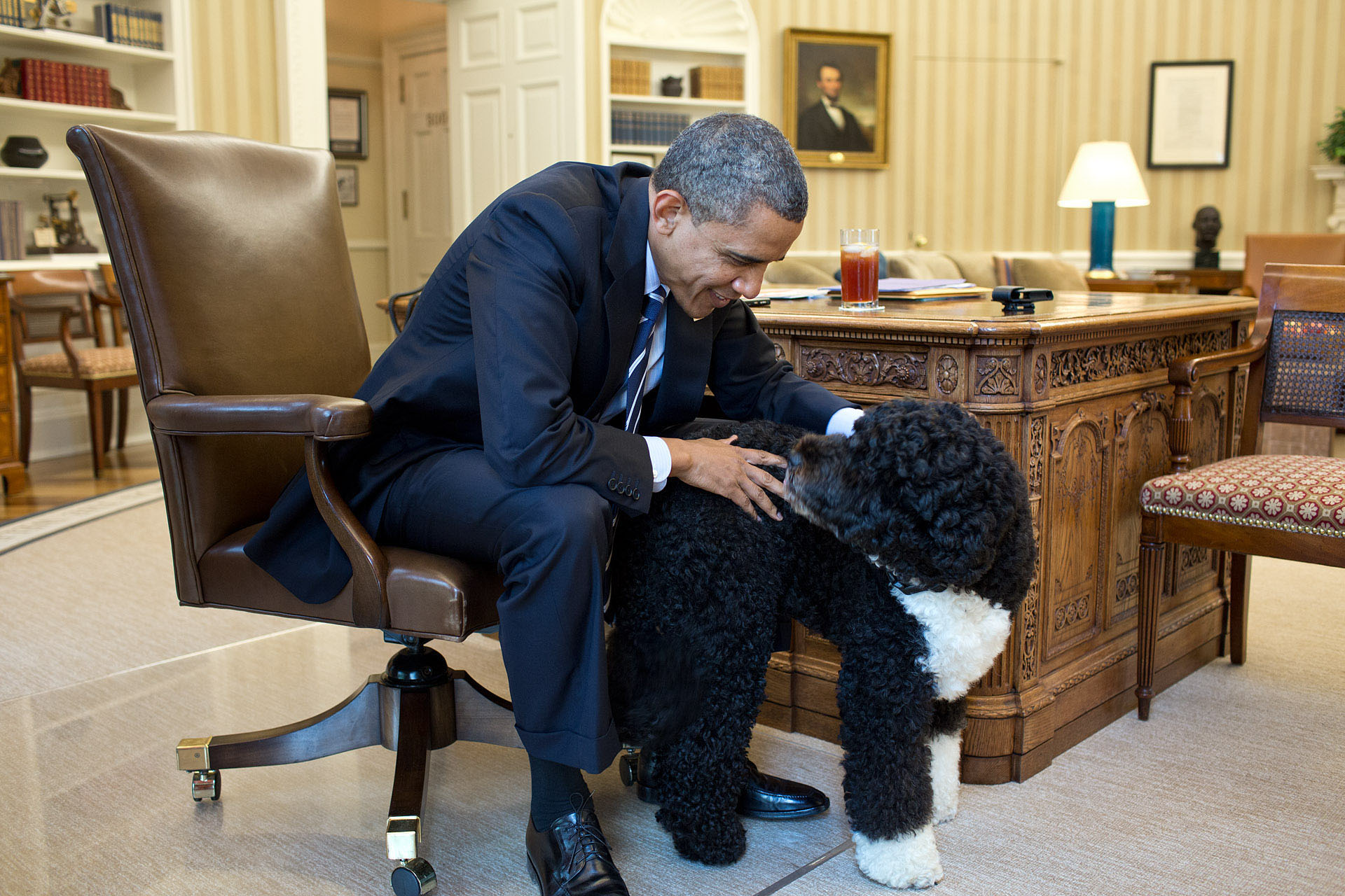 President Obama Pets Bo In The Oval Office