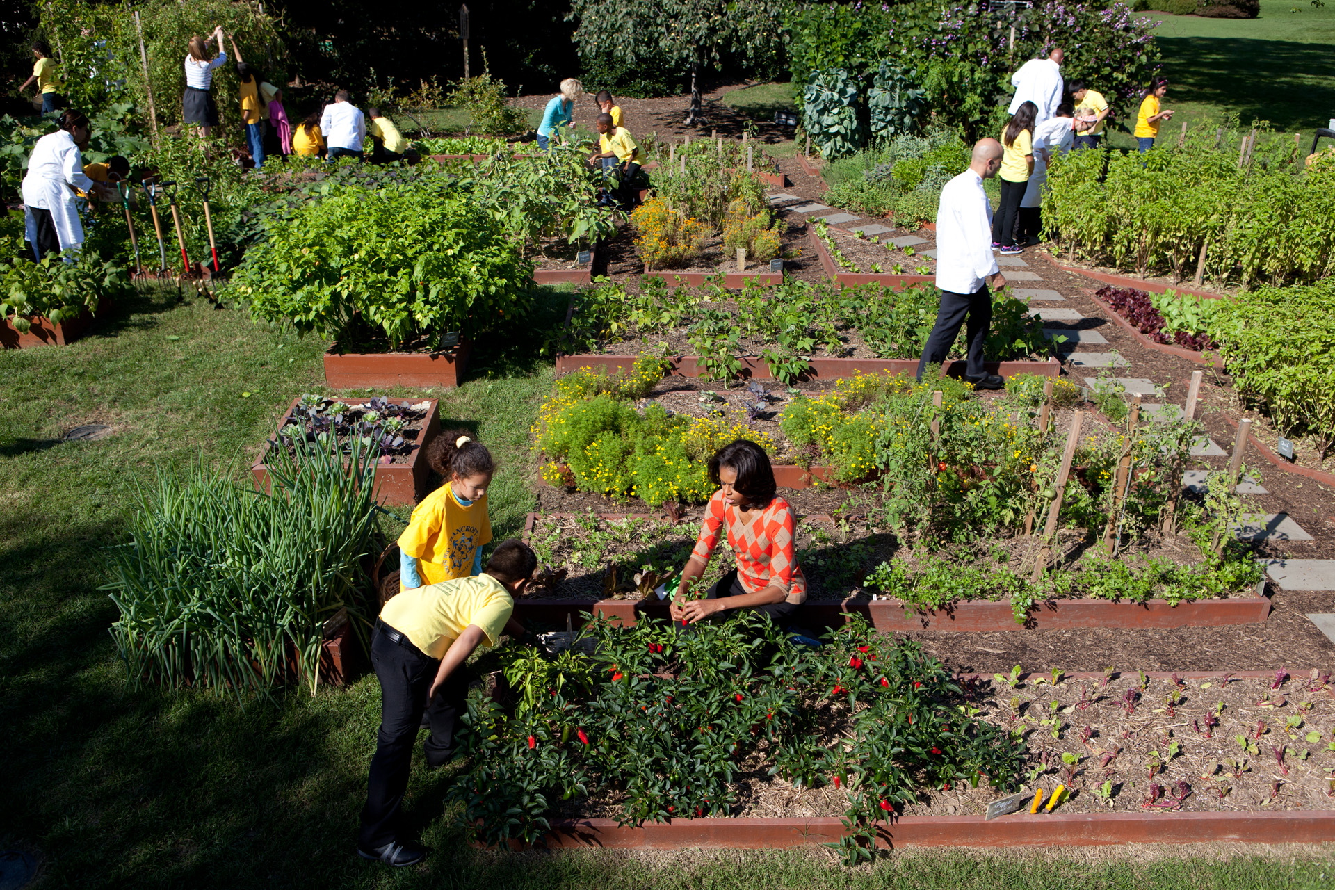 The white house kitchen garden fall harvest and grilled for House and garden kitchen photos