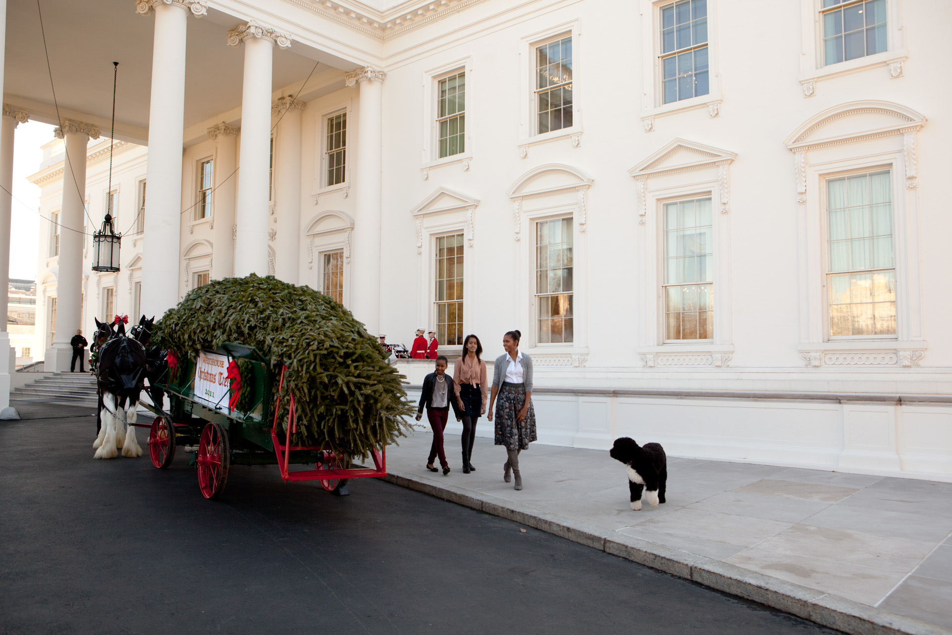 Receiving the White House Christmas tree