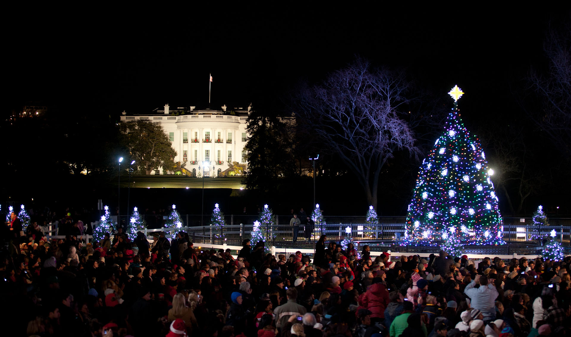 National Christmas Tree Lighting.Watch Live The 2013 National Christmas Tree Lighting