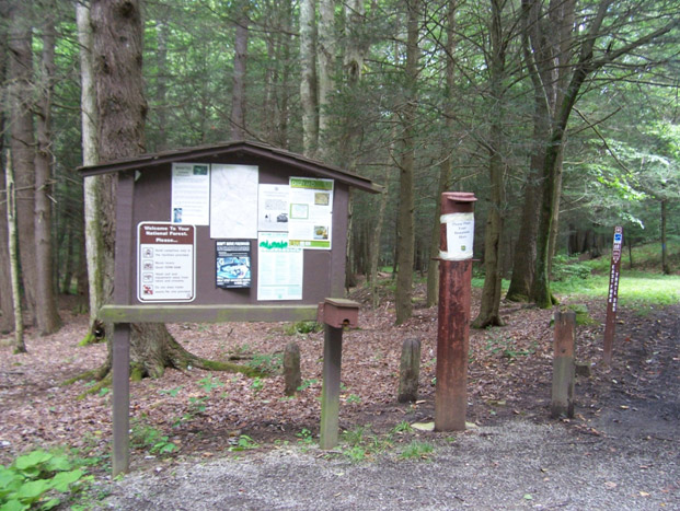 Monongahela National Forest campground
