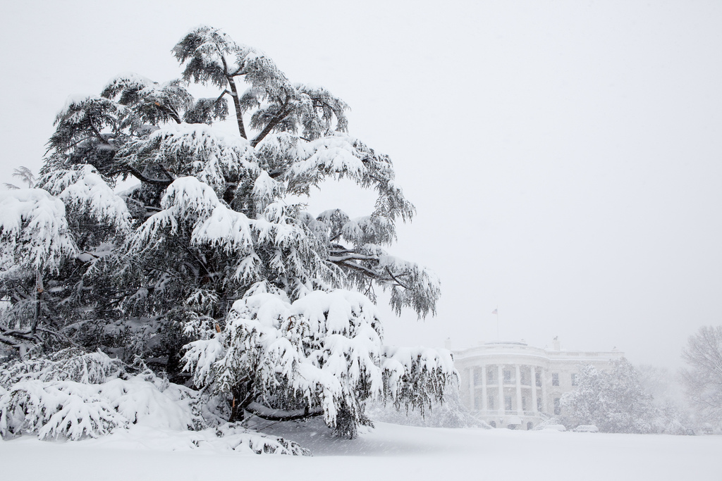 White House Grounds After February Blizzard