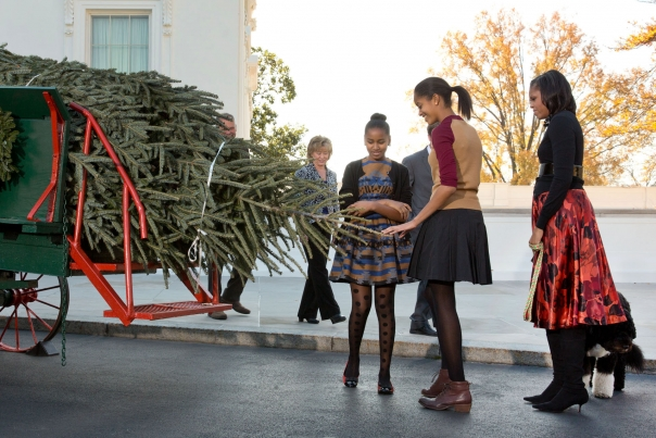First Lady Michelle Obama, with daughters Sasha and Malia, and the family dog Bo, receives the official White House Christmas tree