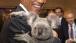 President Obama Holds a Koala