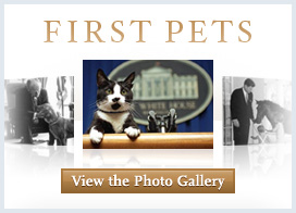 First Pets Photo Gallery