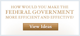 View Ideas for Government Reform