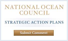 National Ocean Council Strategic Action Plan
