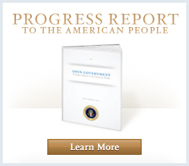 Learn More about the Progress Report to the American People