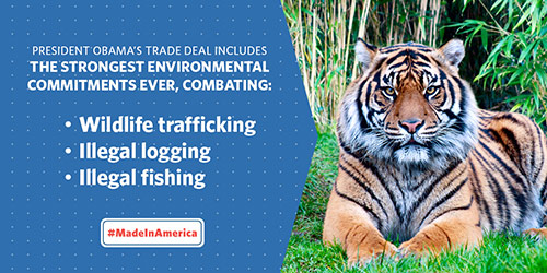 President Obama's trade deal includes the strongest environmental commitments ever — combatting wildlife trafficking, illegal logging, and illegal fishing.
