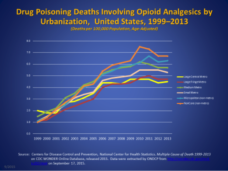 Image result for opioids epidemic in america