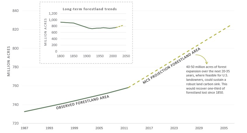 Long-term forestland trends