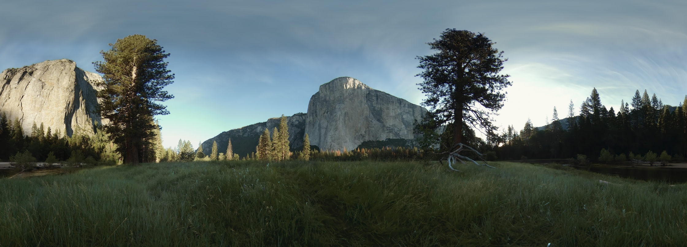 El Cap Meadow in Yosemite