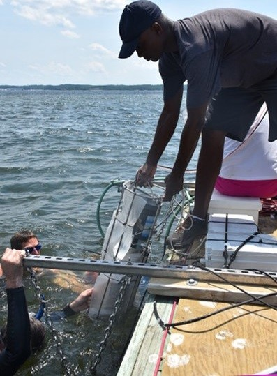 Hands-on science—field-testing nutrient sensors in the Chesapeake Bay, while dodging jellyfish stings.  Photo Credit: Alliance for Coastal Technologies, University of Maryland Center for Environmental Science.